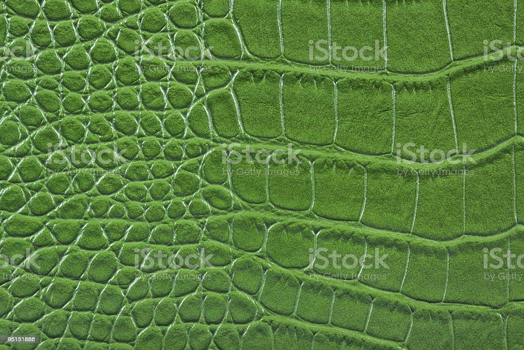Green alligator snake skin leather detail. royalty-free stock photo