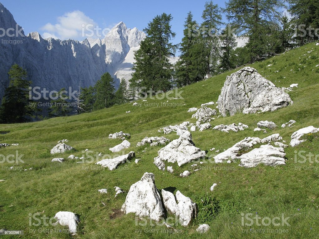 Green Alpine Landscape royalty-free stock photo