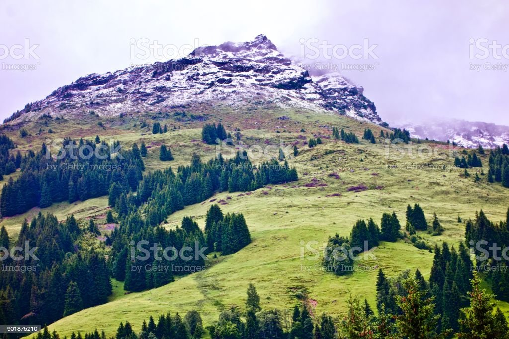 green alpine mountain with a snowy peak under a foggy sky at Talschluß in Saalbach, Austria stock photo