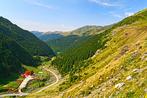 Green alpine mountain valley, chalet near the forest in Fagaras mountains, Romania