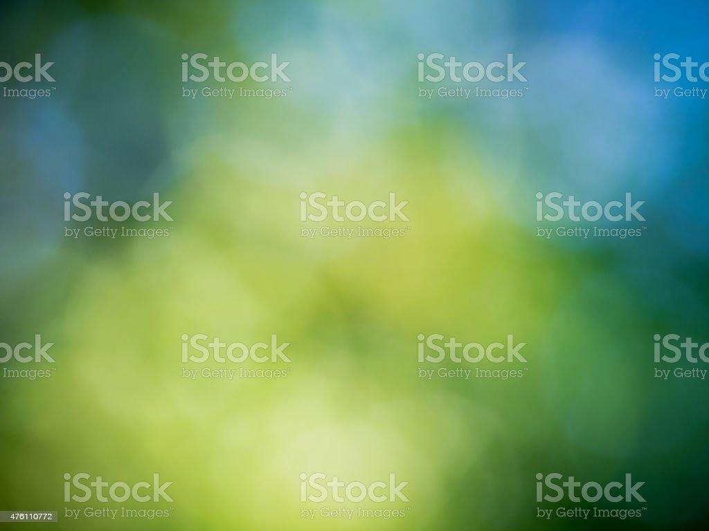 Verde e Azul fundo de floresta foto royalty-free