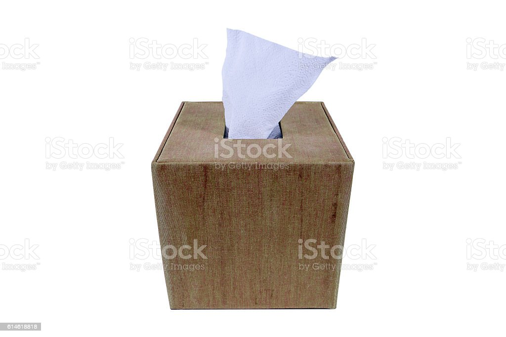 Green and brown silk box of Tissues Isolated On White stock photo