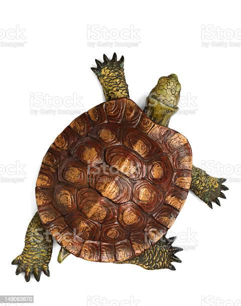 Green and brown tortoise walking across picture picture id149063670?b=1&k=6&m=149063670&s=612x612&h=inzkun1k22mzx3zoho7yliplwwzsyn9lhgwgvc7kthq=