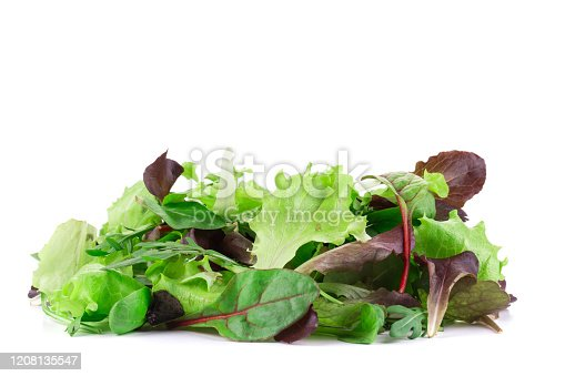 Green and red leaf of lettuce. Isolated in a white background. Close-up