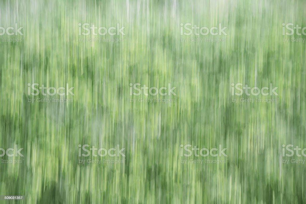 Verde E Bianco Sfocatura Sfondo Astratto Fotografie Stock E Altre