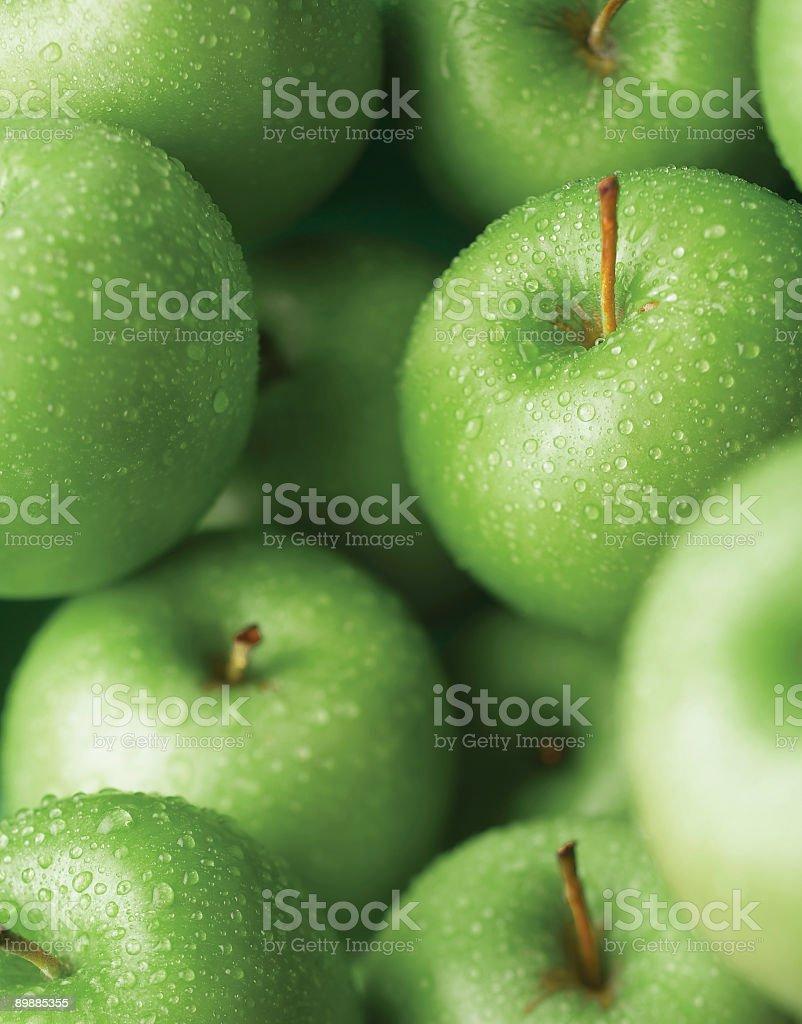 Grüner Apfel Lizenzfreies stock-foto