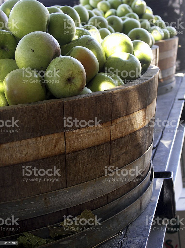 Green apples in a barrel royalty-free stock photo