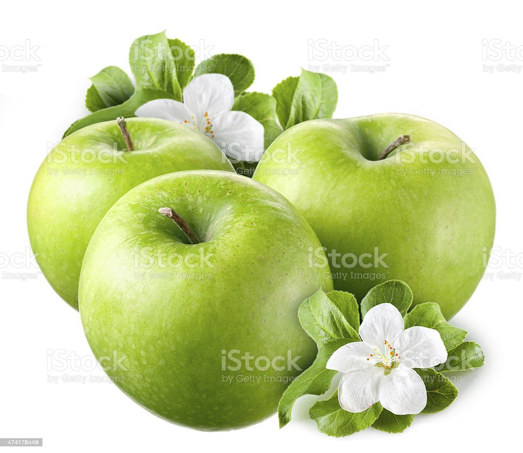 Green apples with leaves and flowers on white background stock photo