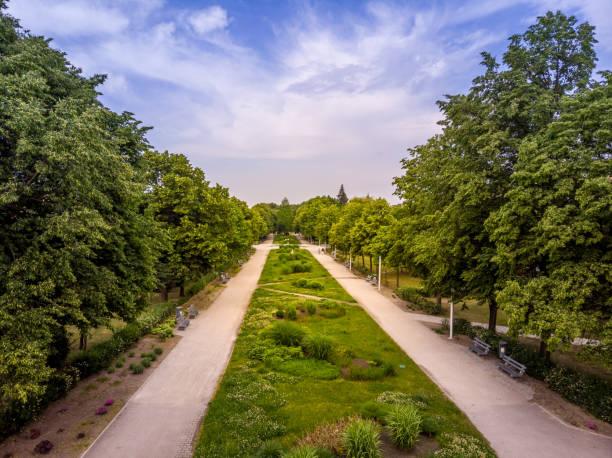 Green areas in Leszno – zdjęcie