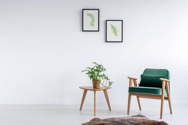 green armchair in room - imitant un animal photos et images de collection