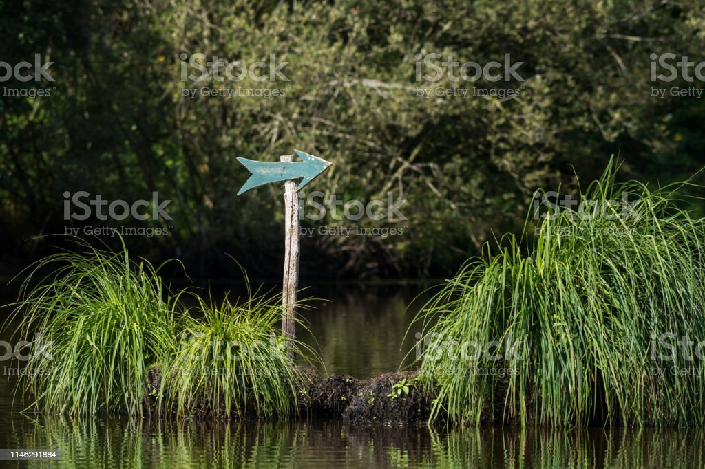 Green arrow on a wooden pole in the Briere marsh