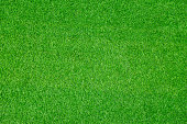 Green artificial grassland textured background