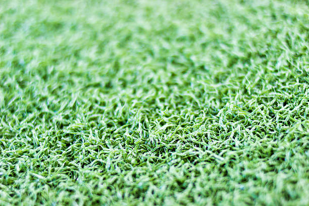 Green artificial turf close up Green artificial turf close up background texture kathrynsk stock pictures, royalty-free photos & images