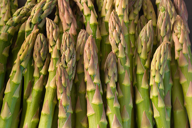 Green Asparagus Spring Vegetable Close-up Texture Pattern Background stock photo
