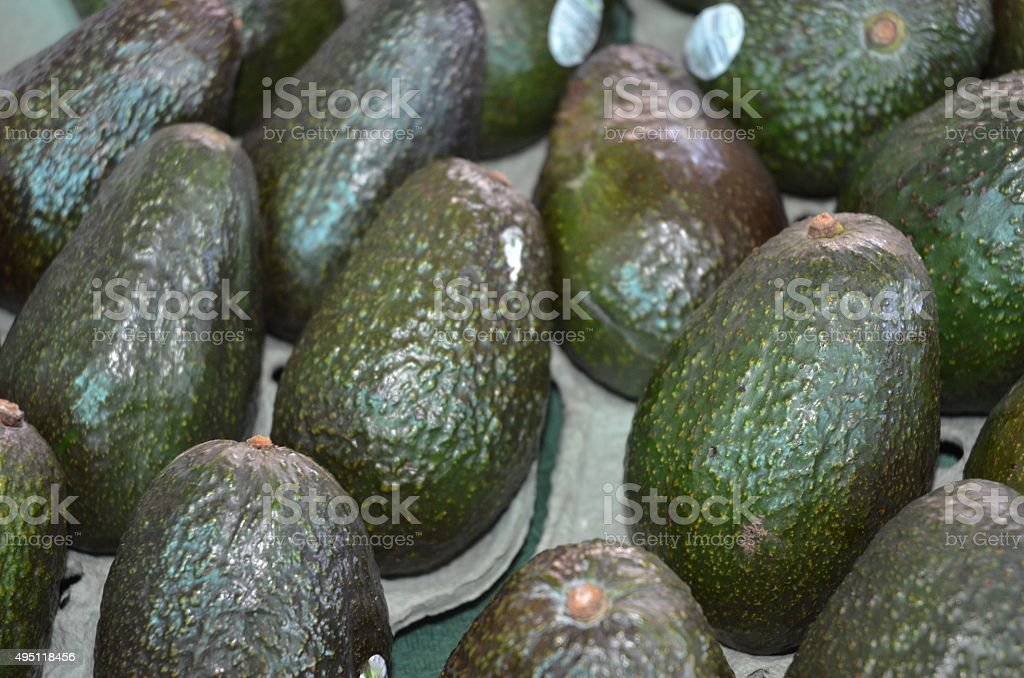 Green Avacados for Sale Displayed in Rows on a Table stock photo