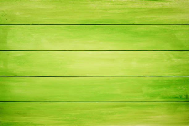 green background - green background stock photos and pictures
