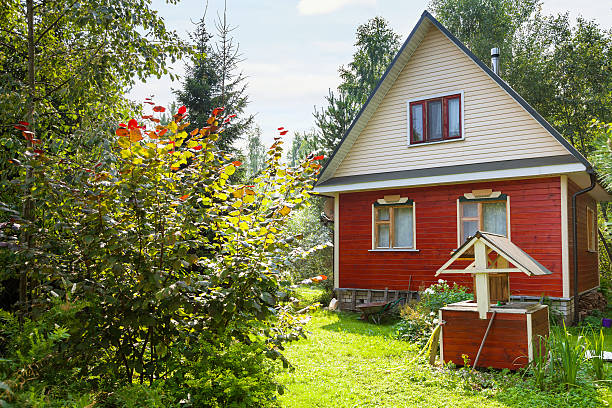 green backyard of country cottage with well green backyard of little country cottage with well and tree in summer day russian dacha stock pictures, royalty-free photos & images