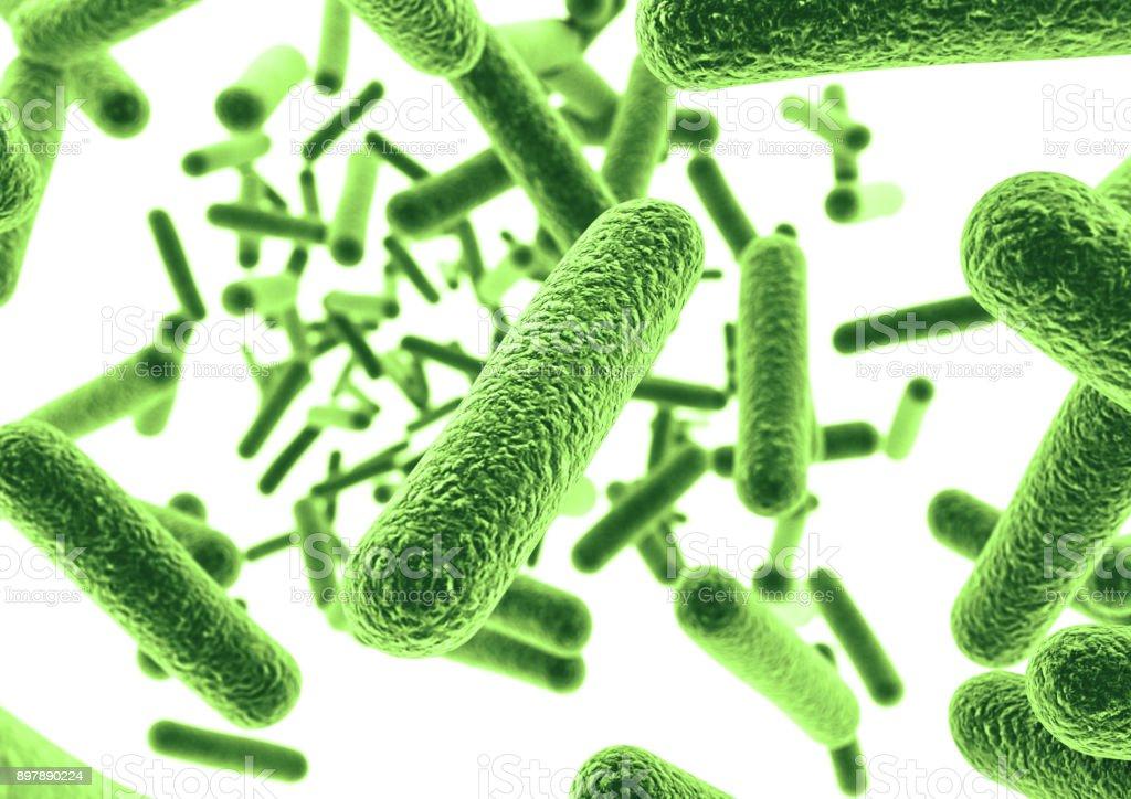 Green bacteria. stock photo