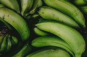 Green banana background