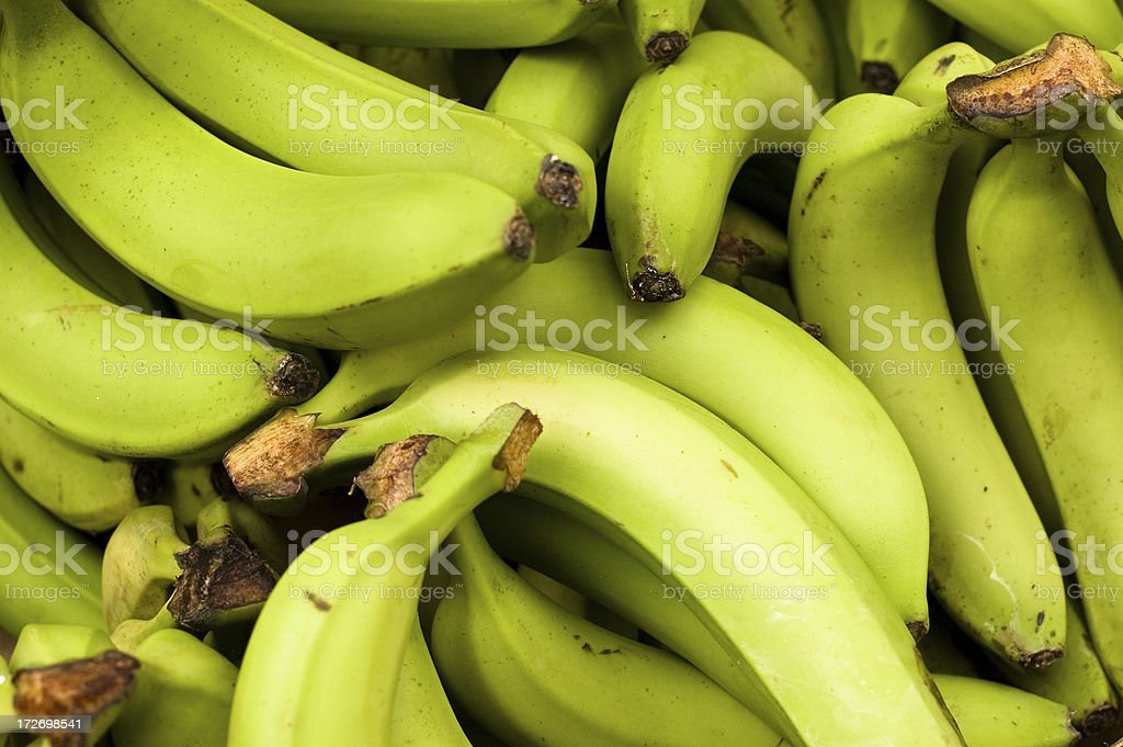 Green Bananas royalty-free stock photo