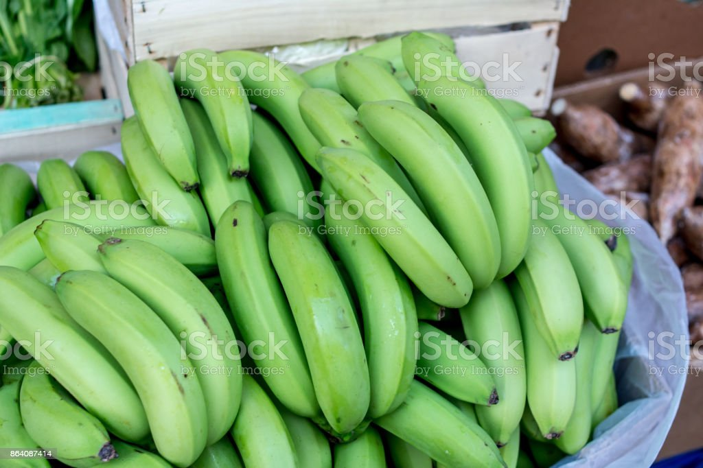 green bananas. royalty-free stock photo