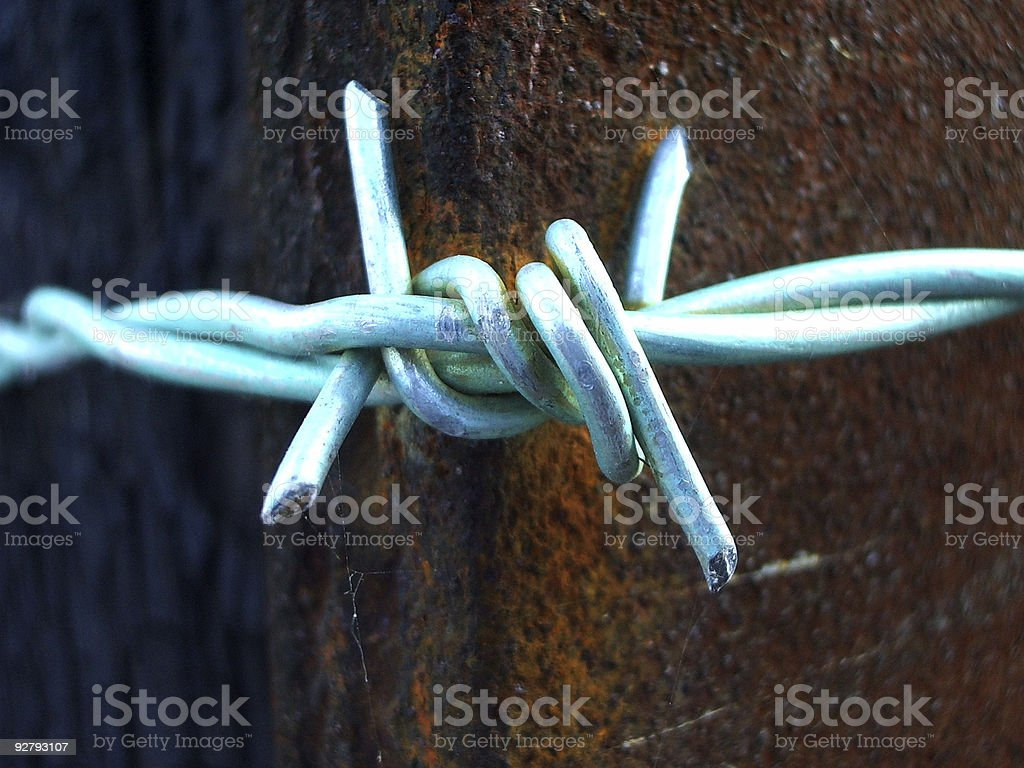 Green Barbed Wire royalty-free stock photo