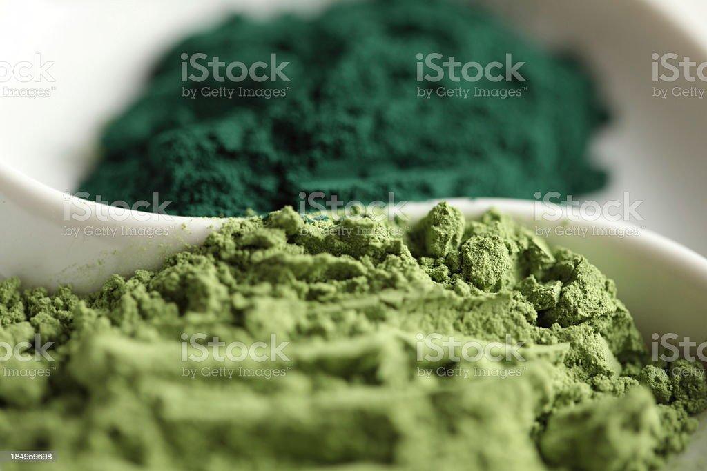 Green Barley Grass and Spirulina Powder stock photo