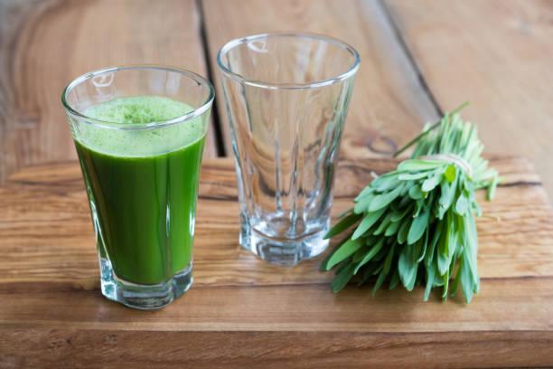 Green barley grass shot stock photo