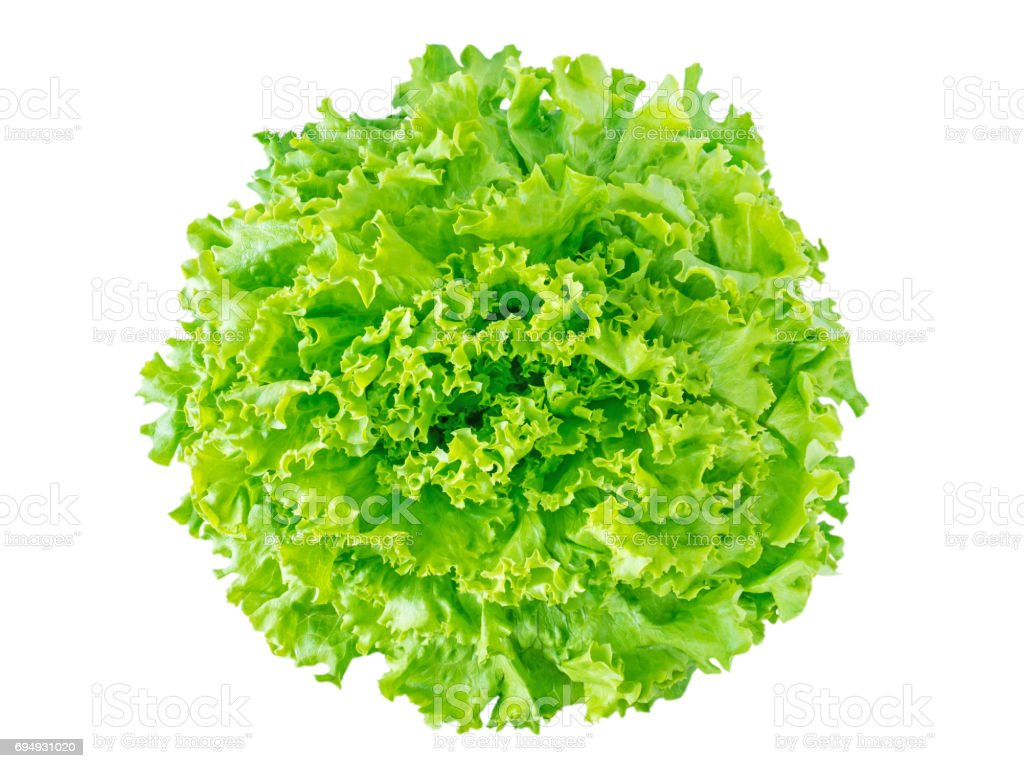 Vue de dessus de tête de salade de laitue batavia vert - Photo
