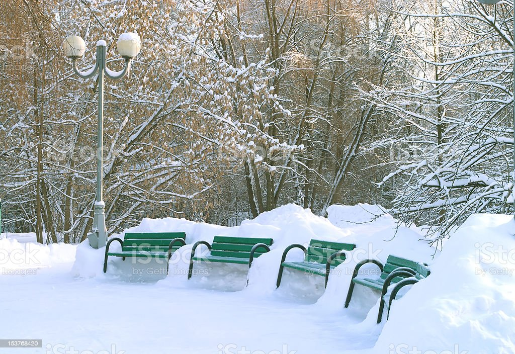 Green benches in winter park royalty-free stock photo