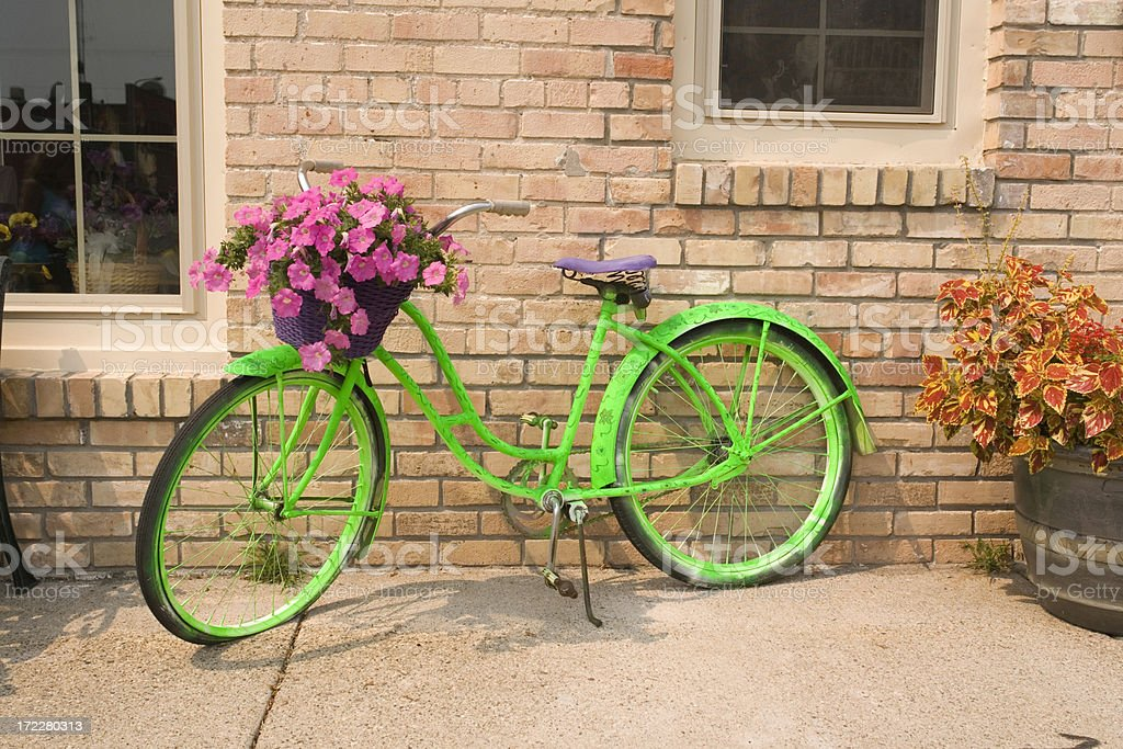 Green Bicycle royalty-free stock photo