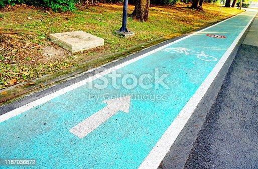 Bicycle lanes in garden park