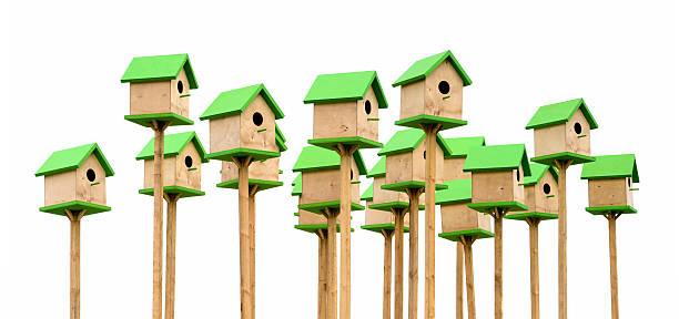 Green birdhouses stock photo