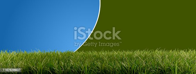 istock green blades of grass 3d-illustration abstract rounded background 1162638607