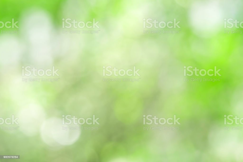 Green blurred background and sunlight with bokeh,  spring season. stock photo