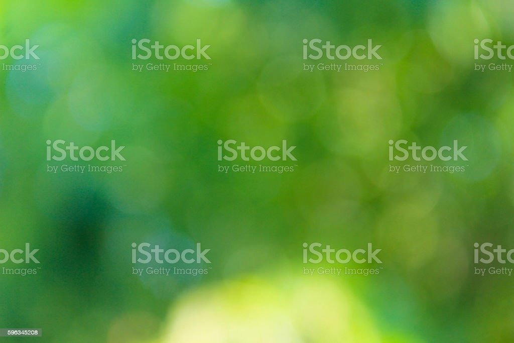 Green blurred background royalty-free stock photo