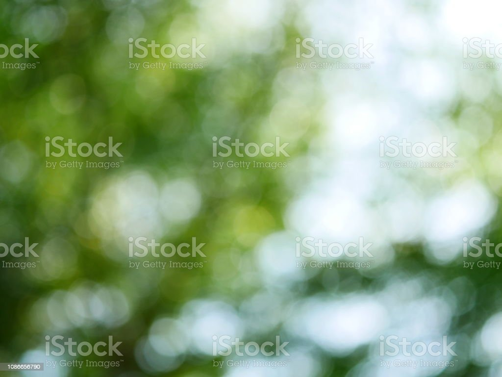Green bokeh background from nature stock photo