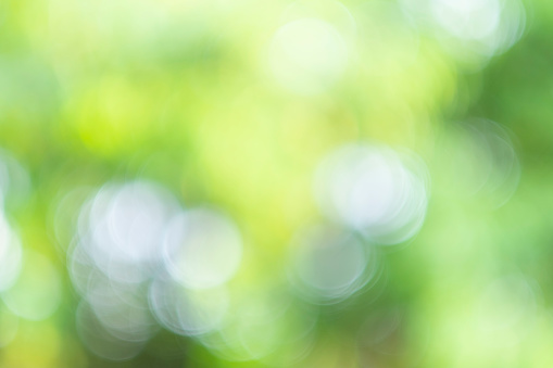 1060912842 istock photo Green bokeh light nature from tree and sky background is a shiny naturally occurring shadow that is not clear but beautiful. 1272120614