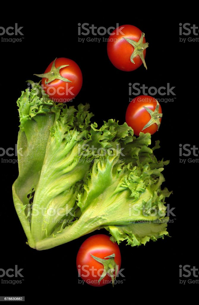 Green branch lettuce with red ripe tomatoes on a black background stock photo