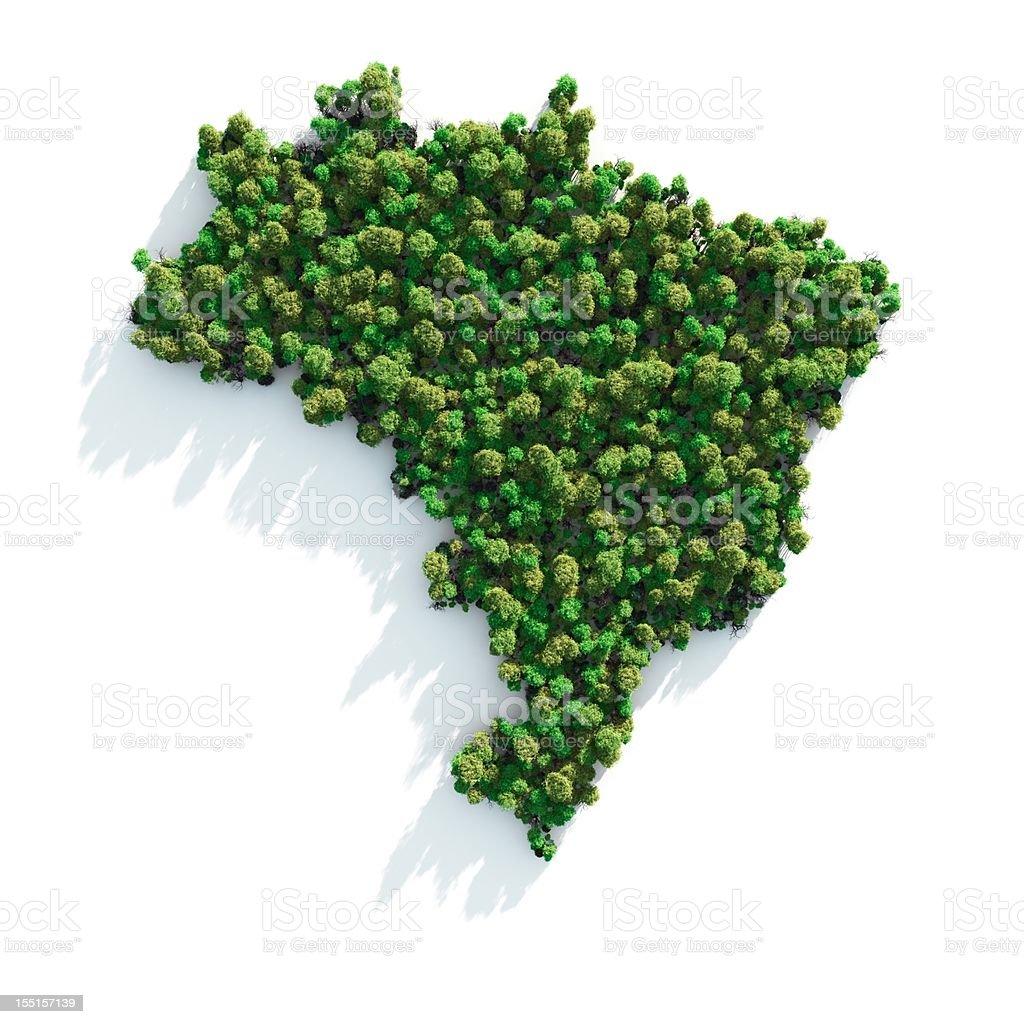 Green Brazil royalty-free stock photo