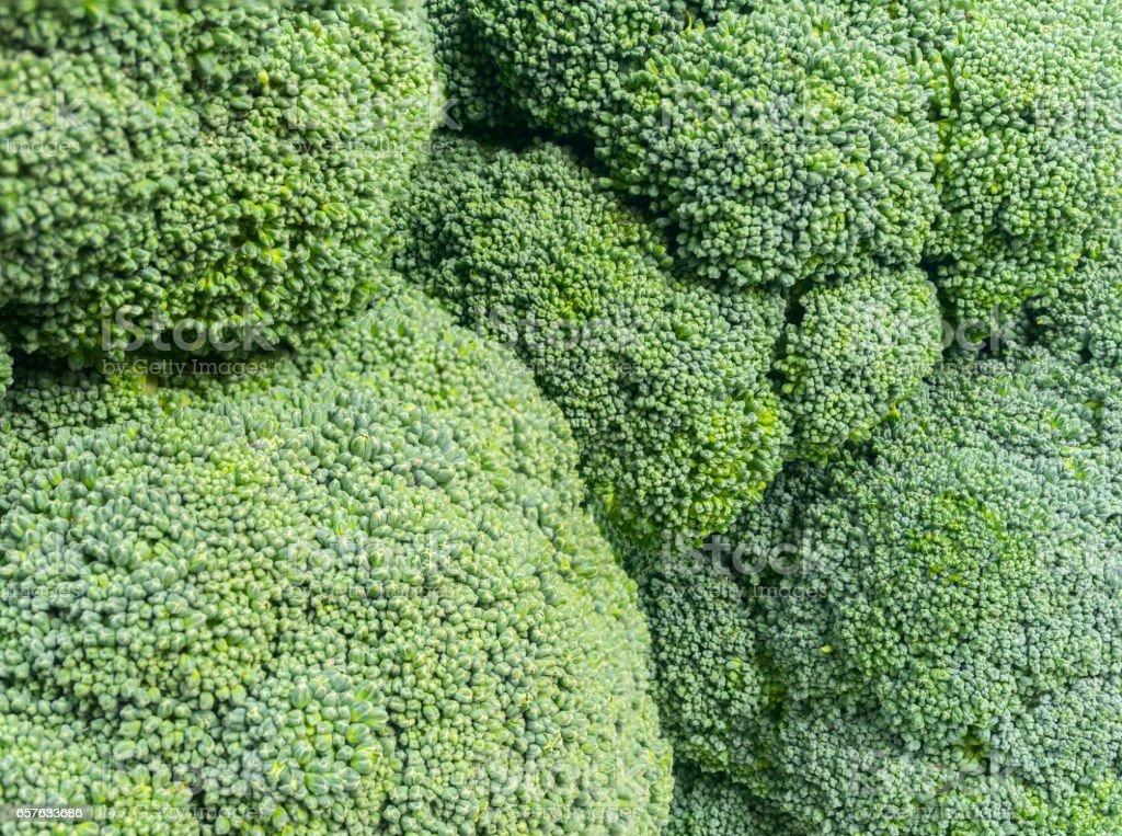 Green broccoli backgraund photo macro texture stock photo