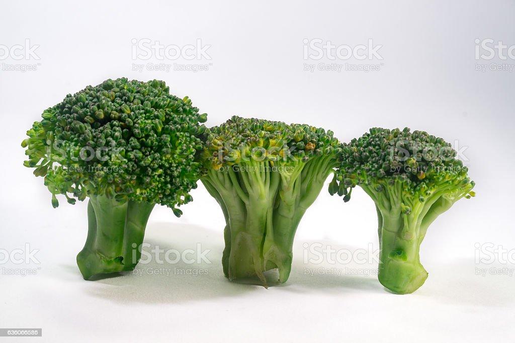 Green Brocolli on White Background stock photo