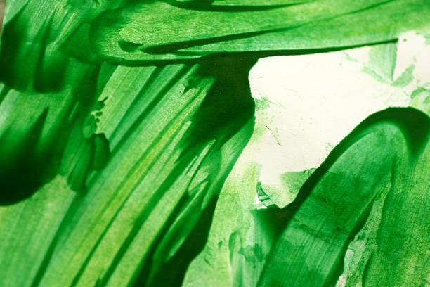 grüne aquarell hintergrund mit pinseloptik - fingerfarben stock-fotos und bilder