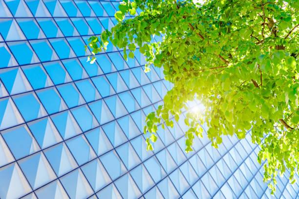 Green-Building-Architektur – Foto