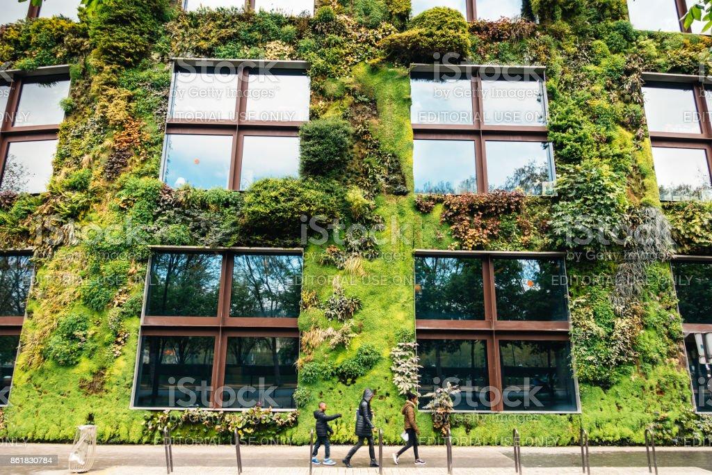Edificio verde en París - foto de stock