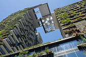 Green skyscraper covered with vertical gardens and ingenious sunlight reflection systems