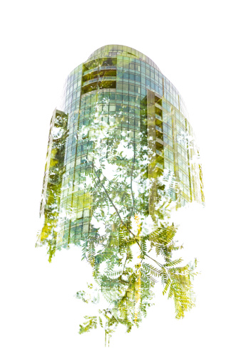 Green building growing out of a tree - double exposure done in-camera