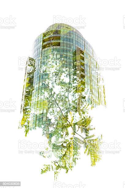 Photo of Green Building