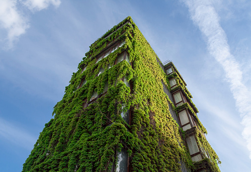 sustainable architecture stock photos