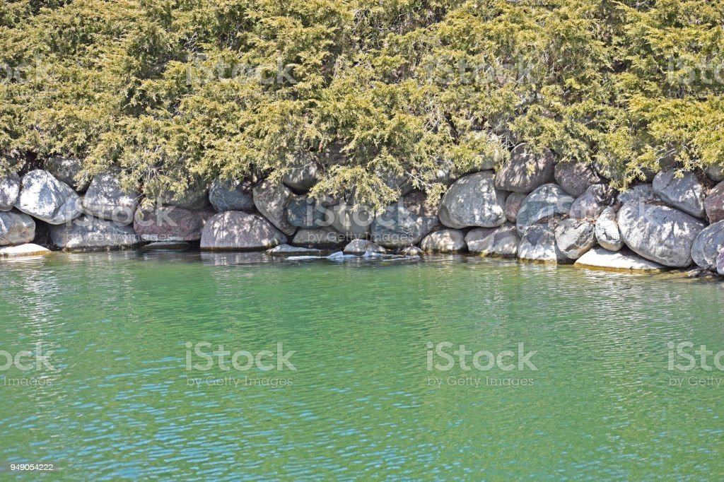 Green Bush and rocks by waterside